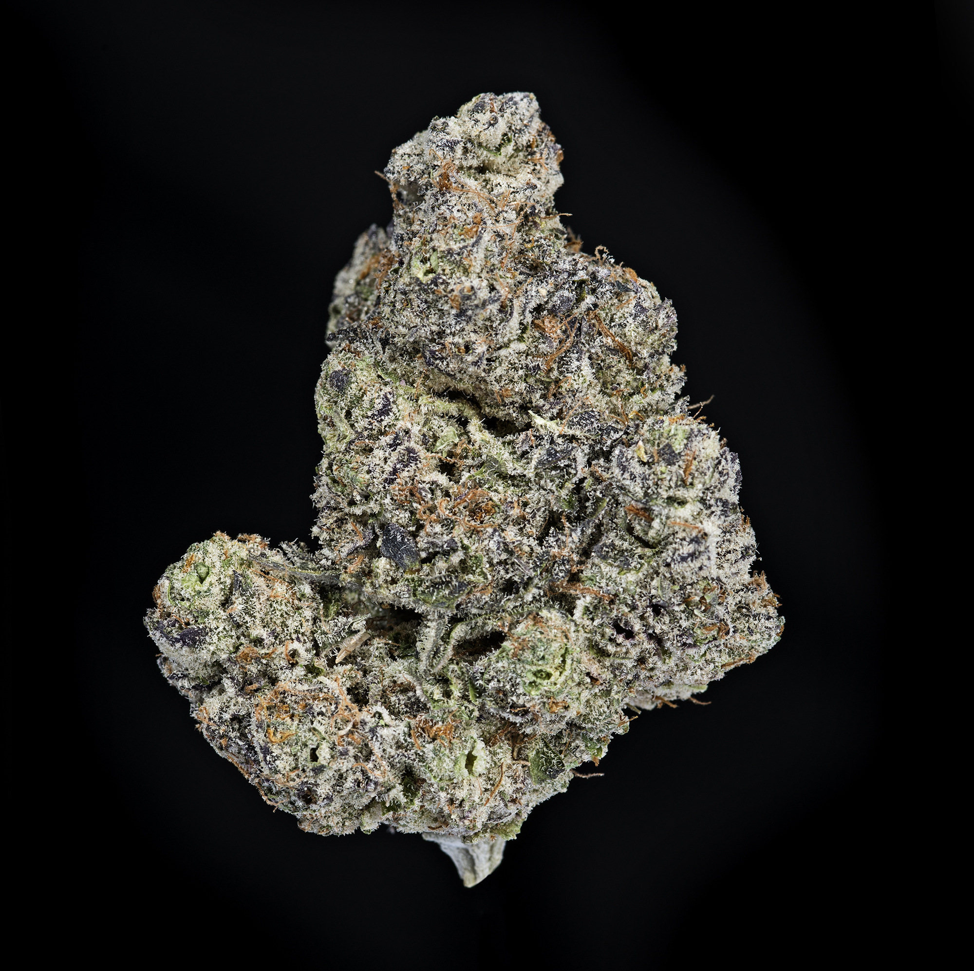 MENDO BREATH black