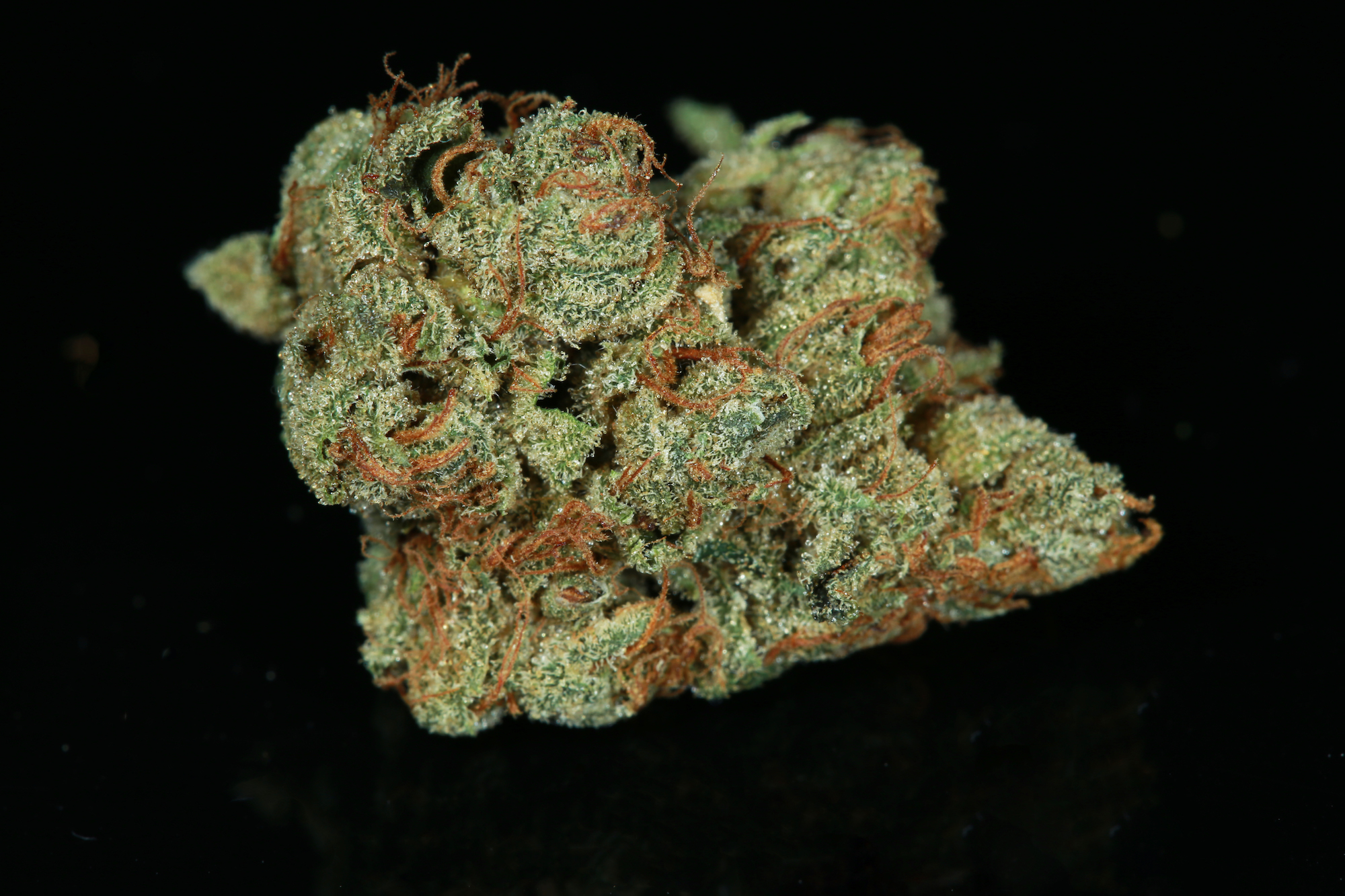 SFV-OG-marijuana-matrix-nevada-best-weed-ever-2